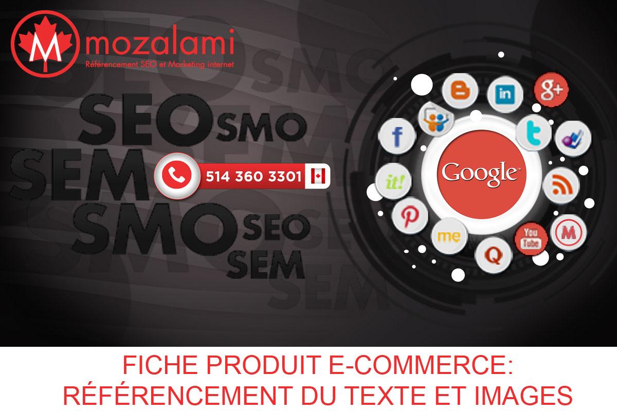fiche-produit-e-commerce-referencement-texte-image-mozalami