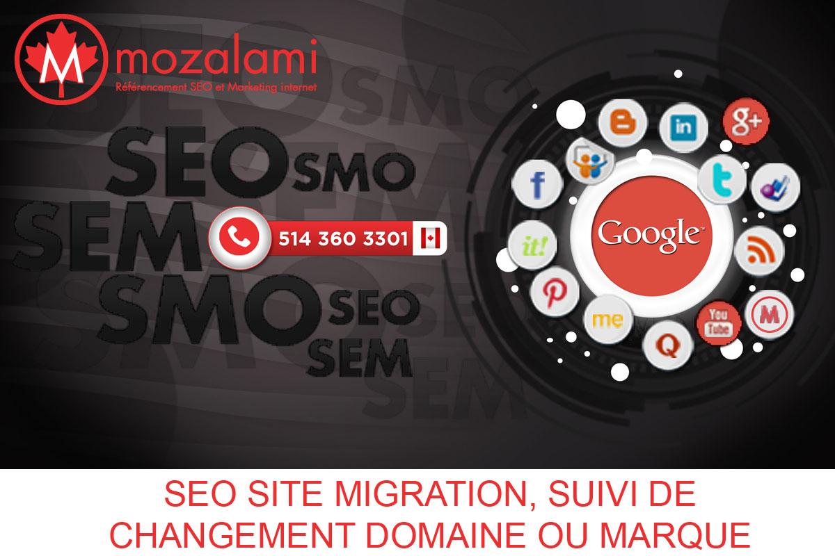 seo-site-migration-suivi-changement-domaine-marque-mozalami
