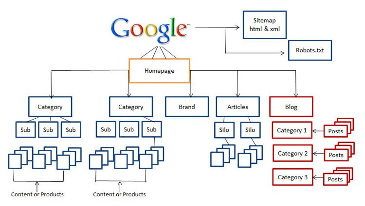 website-architecture-web-signal-seo