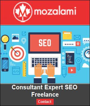 Mozalami-consultant-seo-blog
